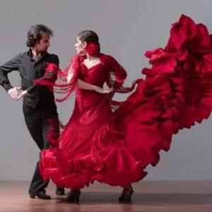 flamenko-1